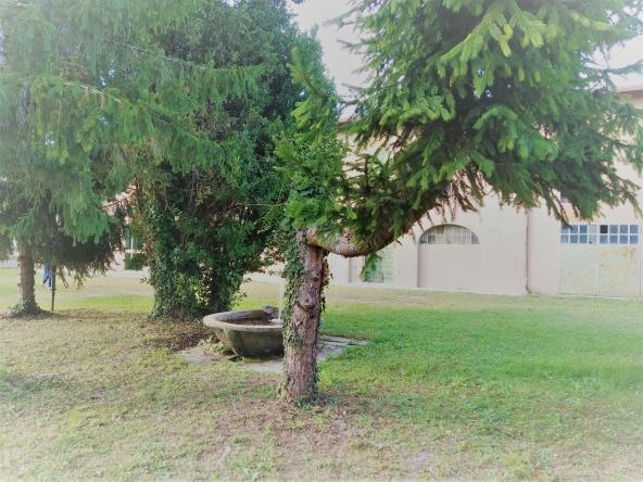 quinto-rustico-giardino-terreno-magazzino-garage(2)