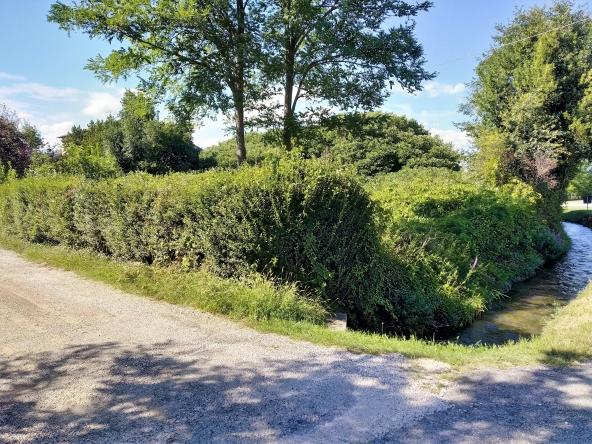 rustico-giardino-travi-camino-piscina-campagna (5)