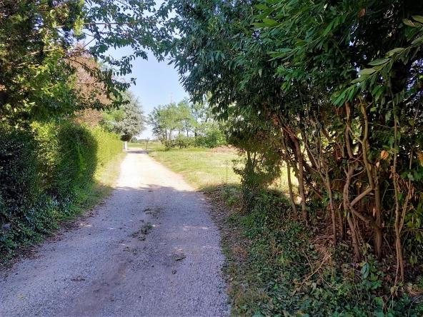 rustico-giardino-travi-camino-piscina-campagna (7)