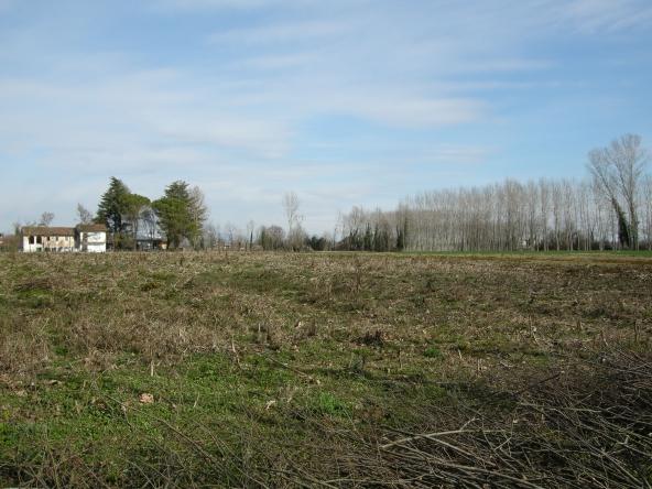 Rustico-singolo-terra-agricola-campagna (1)