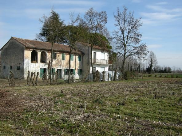 Rustico-singolo-terra-agricola-campagna (3)