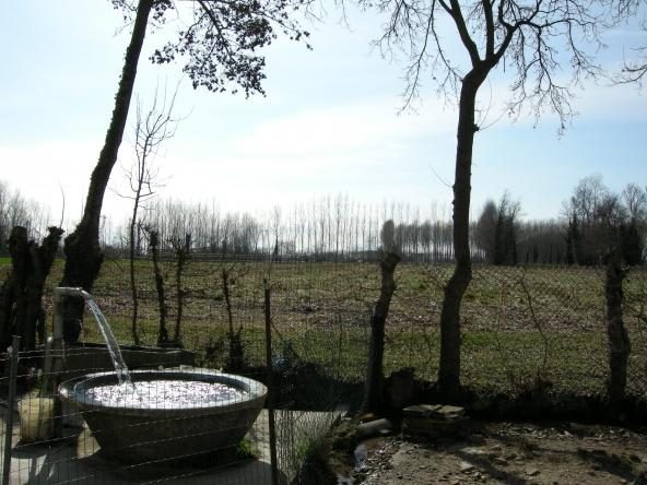 Rustico-singolo-terra-agricola-campagna (8)