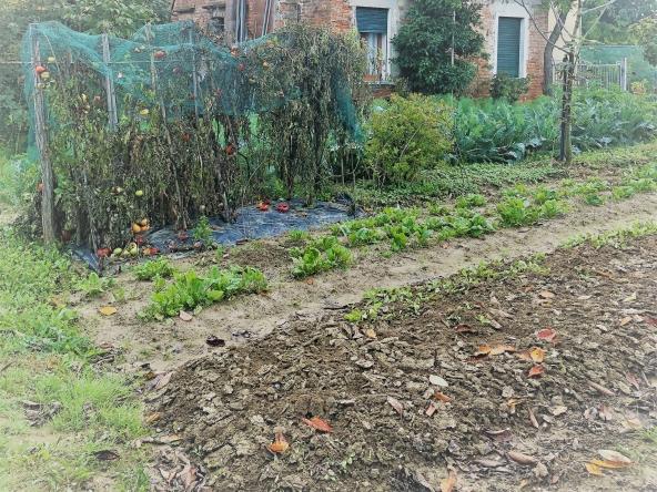 quinto-rustico-giardino-orto-terreno-legnaia(5)