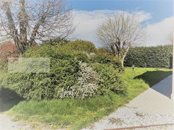 casa-giardino-tranquillita-indipendenza-vendita__9